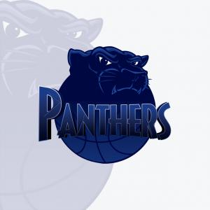 Papamoa Panthers